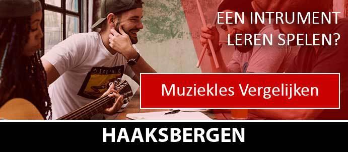 muziekles-muziekscholen-haaksbergen