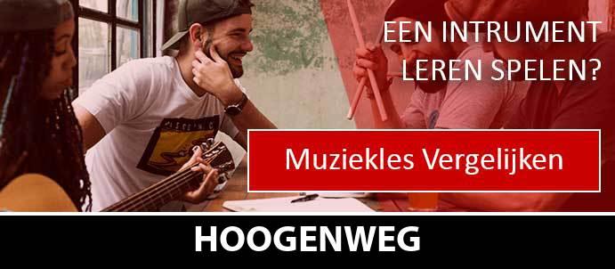 muziekles-muziekscholen-hoogenweg