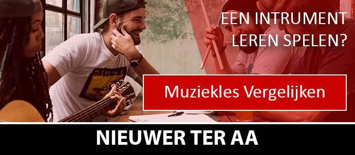 muziekles-muziekscholen-nieuwer-ter-aa