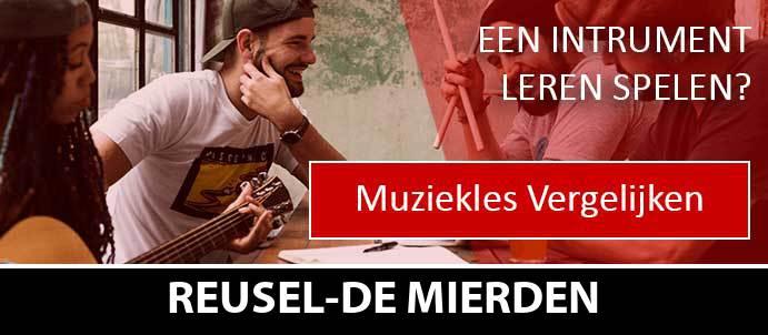 muziekles-muziekscholen-reusel-de-mierden