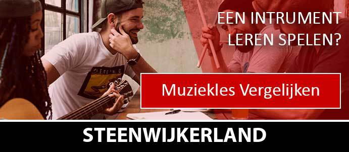 muziekles-muziekscholen-steenwijkerland
